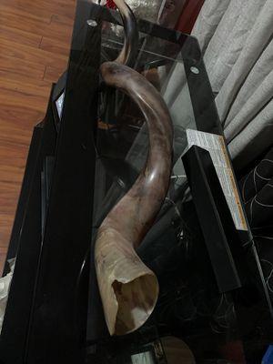 Chofar un instrumento para alabar a Dios for Sale in Los Angeles, CA