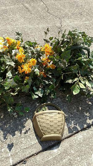 Plants, 2 plastic in baskets for Sale in Roanoke, VA