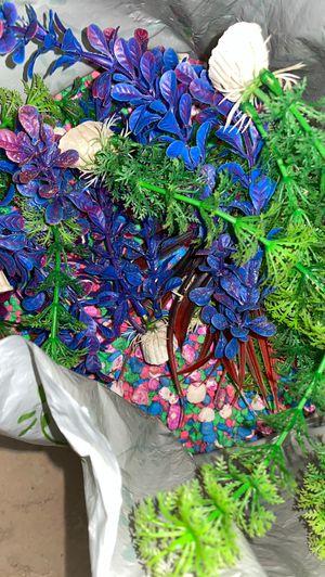 Fish Decorations for Sale in Oak Hills, CA