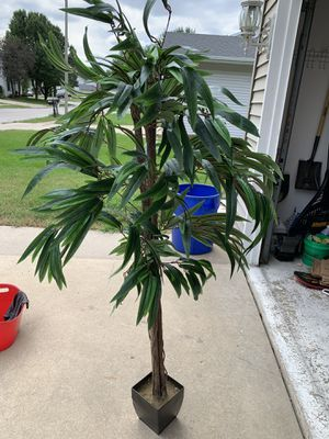 Fake House plant for Sale in Joliet, IL