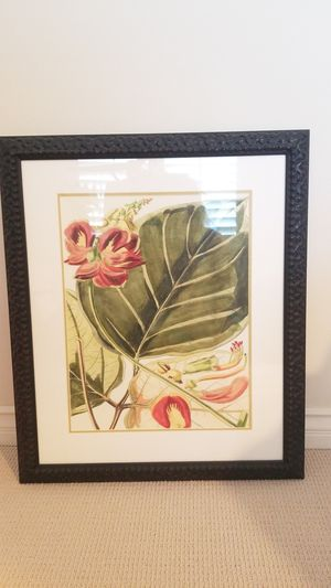 Tropical for Sale in Costa Mesa, CA