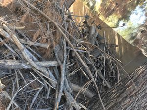 Free wood !!!! for Sale in Laveen Village, AZ