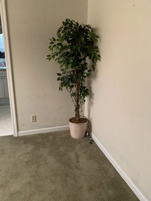 Fake indoor tree with lights for Sale in Tacoma, WA