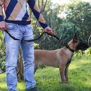 NEW!! Dog Black Bungee Leash and Collar Set for Sale in Norwalk, CA