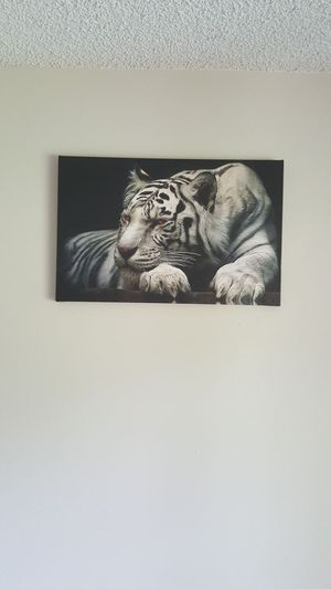 22 x 14 inch canvas for Sale in Tampa, FL