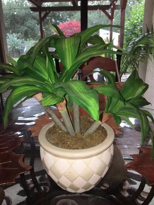 Artificial Palm Potted Plant-16 inches Tall for Sale in Hayward, CA
