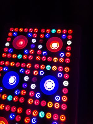 LED Grow Lights, Brand New w/ 3 Year Warranty - NO HEAT! Uses 110v regular outlets! for Sale in Detroit, MI