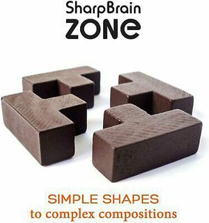 3D Wooden Brain Teaser Puzzle by Sharp Brain Zone. Genius Skills Builder T-Shape Pieces with Tetris Fit. Educational Toy for Kids & Adults for Sale in Kernersville, NC
