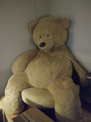 Life size teddy bear for Sale in Zephyrhills, FL