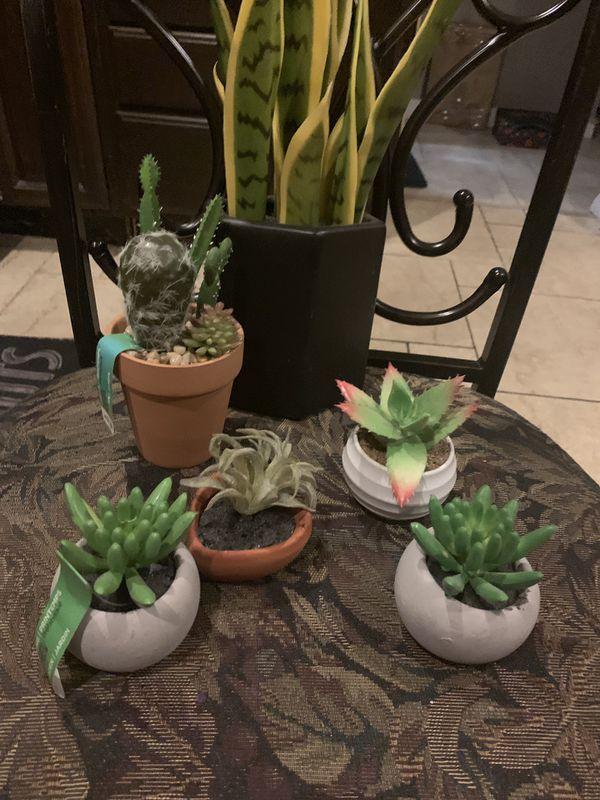 Fake plants.