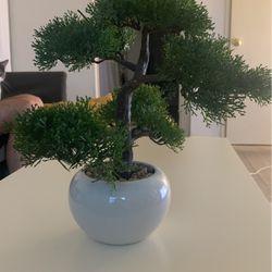 Artificial Bonsai Tree for Sale in Los Angeles,  CA