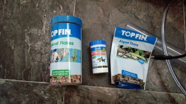 Fish tank, Aquaponics, and more