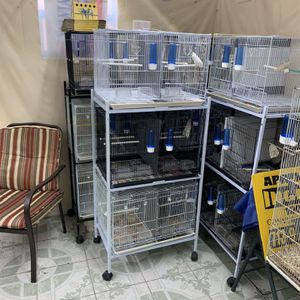 Bird Cages for Sale in Houston, TX