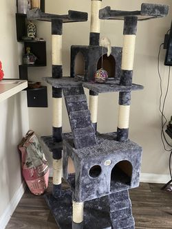 CAT CONDO - 6ft tall for Sale in Tampa,  FL