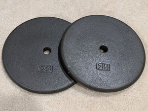 Pair of 25 lb. Standard Weight Plates for Sale in West McLean, VA