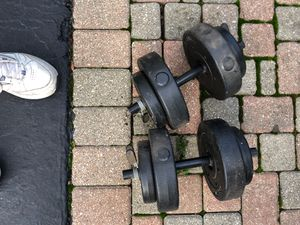 20 pound dumbbells each for Sale in Lake Zurich, IL