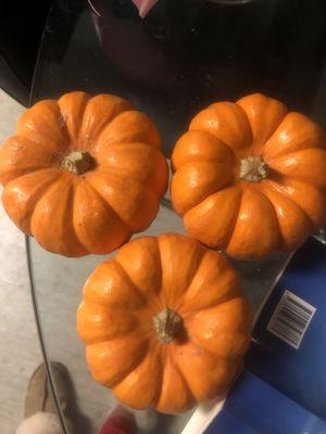 Mini pumpkins for Sale in San Ramon, CA