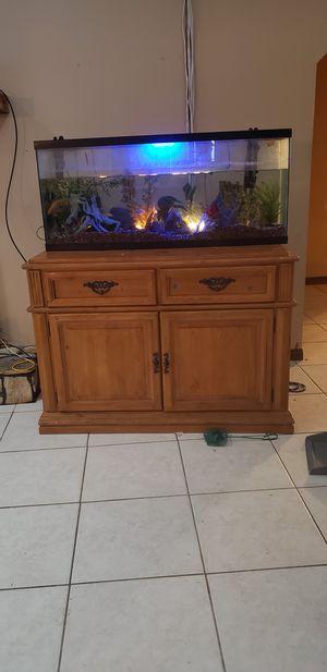 Aquarium, Fish for Sale in Mary Esther, FL