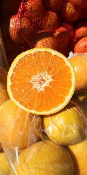 Valencia orange..picked fresh $25.00 whit 50 pound for Sale in Santa Maria, CA