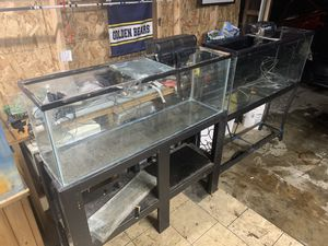 (2) 55 gals fish tank with stands and extras for Sale in Long Beach, CA