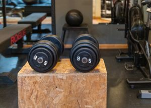 Pair of York Pro 95lbs Dumbells for Sale in Laurel, MD