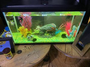 Fish aquarium for Sale in Aragon, GA