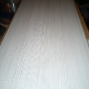 Shisua Bianco for Sale in Glendale, AZ