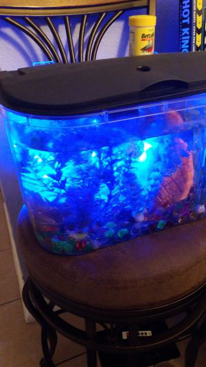 Fish tank with beta fish for Sale in Houston, TX
