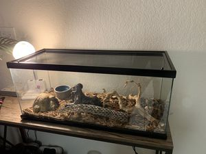 Reptile tank for Sale in Scottsdale, AZ