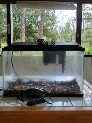 10 gal fish tank for Sale in Polk City, FL