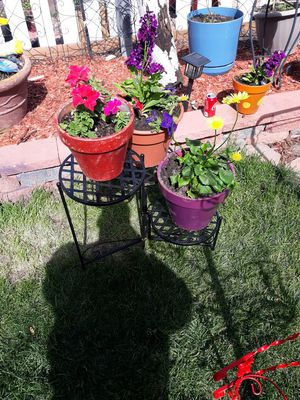 Plant stand& Flowers for Sale in Colorado Springs, CO