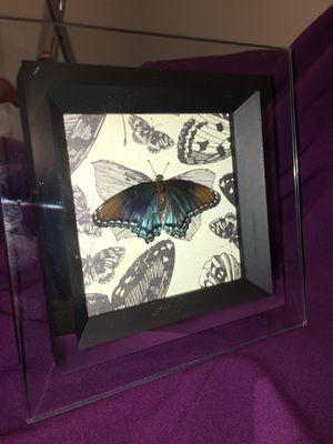 Framed Butterfly Wall Art for Sale in Birmingham, AL
