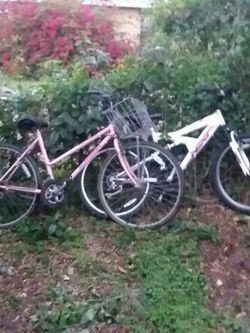 Bicycles for Sale in Longwood,  FL