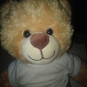 Brown Build-A-Bear, Build A Bear Stuffed Animal Plushie Toy Bear Stuffed Animal for Sale in Aurora, CO