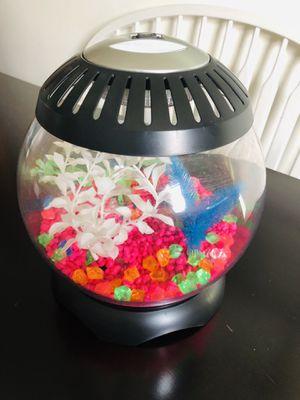 IMAGINARIUM Fish Tank 1.3 Gallon 9.25 IN Round Kids Pet Animal for Sale in Wheaton, IL