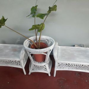 Rathan Outdoor/indoor Seats And Plant Stand /Table for Sale in Opa-locka, FL