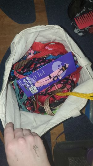 Bag of dog leashes for Sale in Charlotte, NC