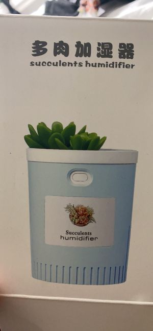Succulent humidifier for Sale in Menifee, CA