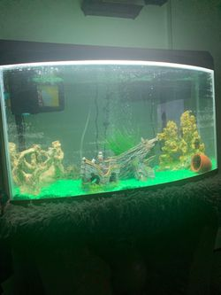 Fish Tank W/Stand for Sale in Fresno,  CA
