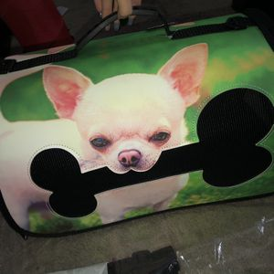 Green Small Dog Carrier for Sale in Ontario, CA