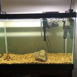 75 Gallon Aquarium for Sale in Lithia,  FL