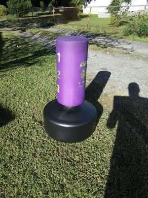 Lil Dragon Wavemaster punching bag for Sale in King George, VA