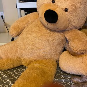 5 Ft Tall Teddy Bears for Sale in Puyallup, WA