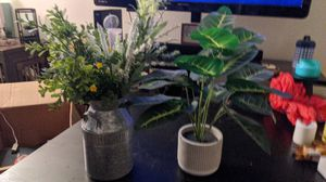 Fake house plants for Sale in Camas, WA