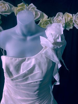 Wedding dress never been worn make an offer for Sale in Durham, NC