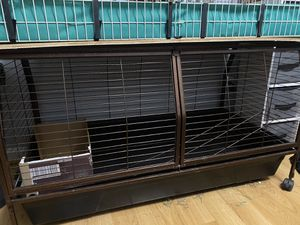 Guinea pig cage for Sale in Jeffersonville, IN