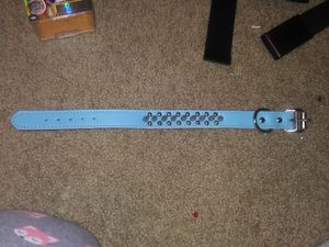 New spiked dog collar for Sale in Tullahoma, TN