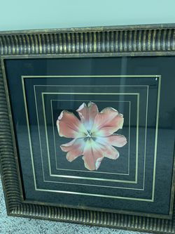 Large Glass Frame Flower Square for Sale in Norfolk,  MA