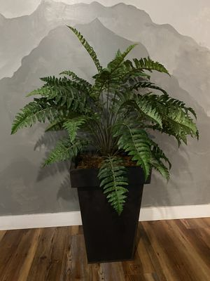 Fake Fern Plant for Sale in Bothell, WA