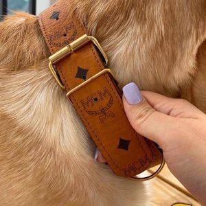 Designer Dog Collars for Sale in Brooklyn, NY